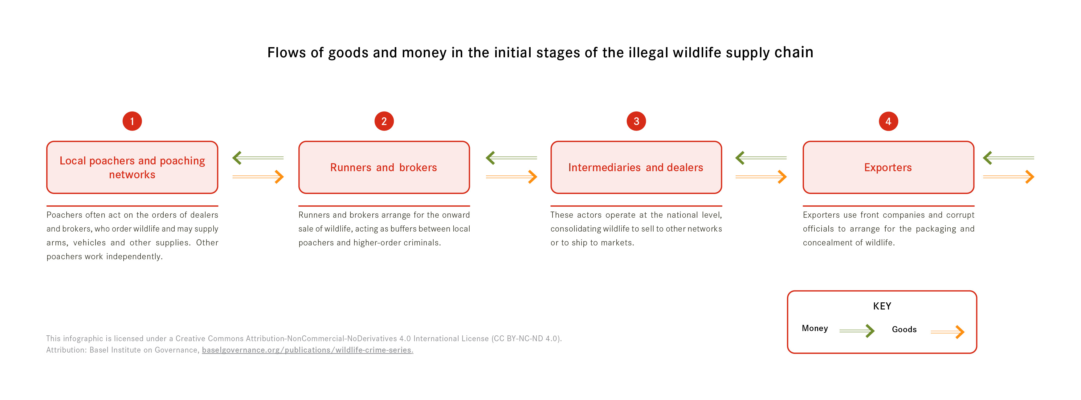Wildlife crime 2: flows of goods and money in the early stages of IWT supply chains