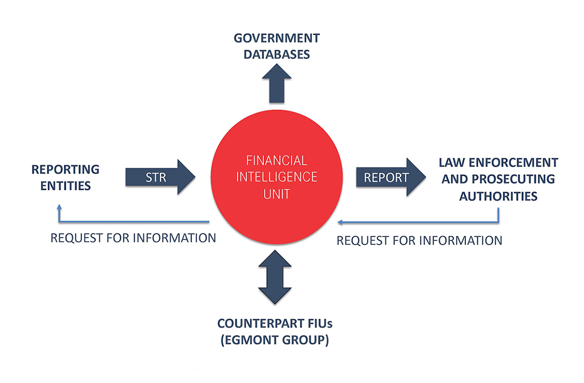 An infographic illustrating the role of FIUs within the anti-corruption system
