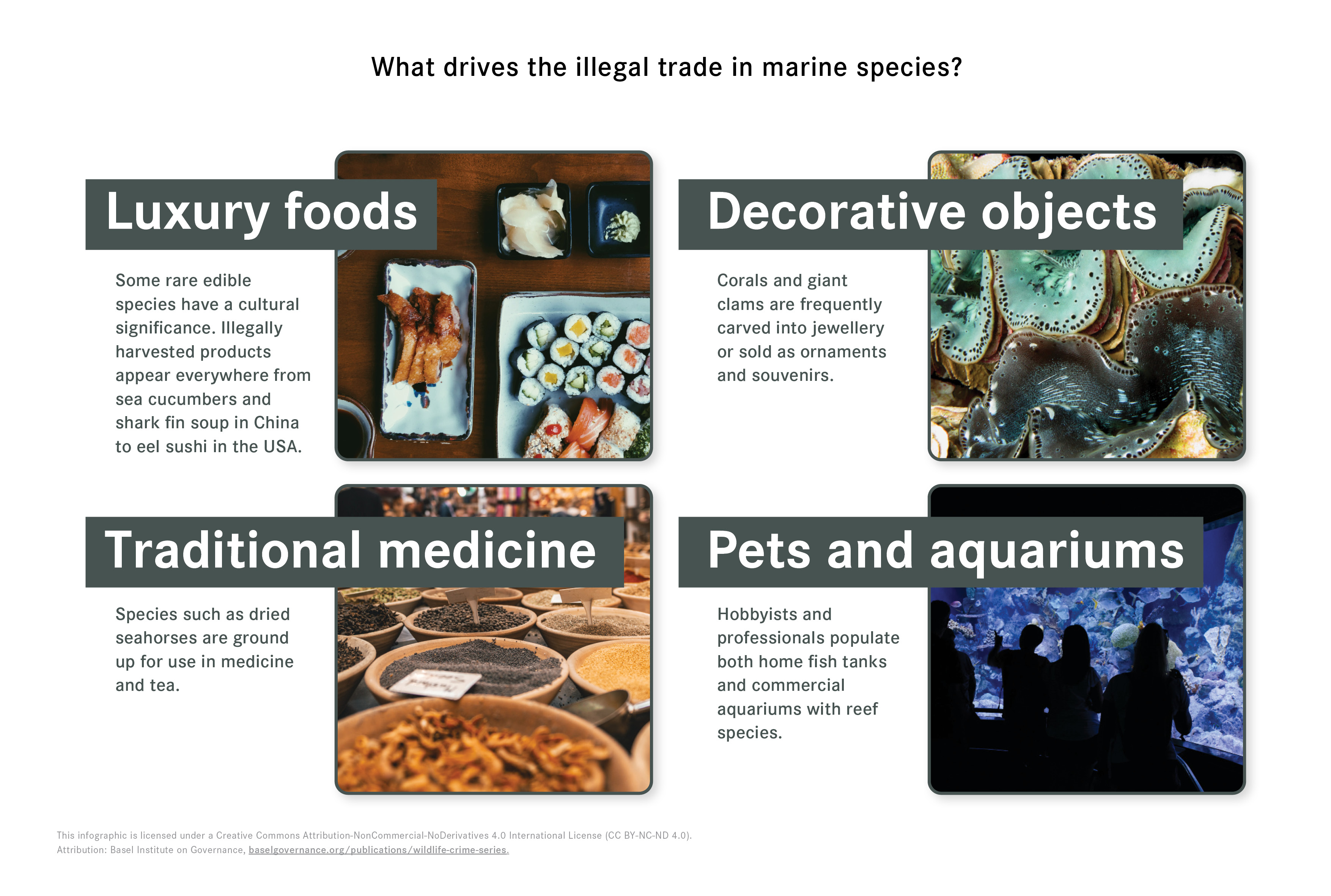 Infographic showing key drivers of demand for the illegal marine products trade.